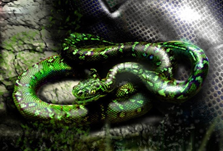 green-snake-1